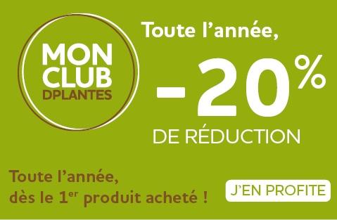 Offre -20%, Laboratoire D.Plantes