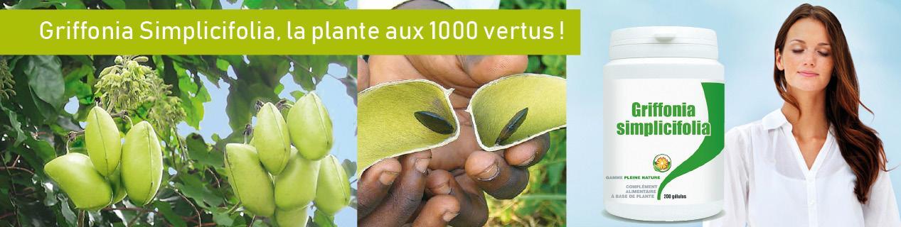 Plante Griffonia | Bénéfices - Meilleure qualité - Pas cher