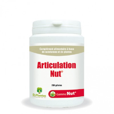 Articulation-Nut